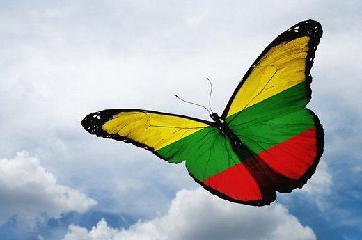 kovo drugelis